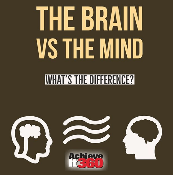 Understanding the Difference Between Your Mind and Brain