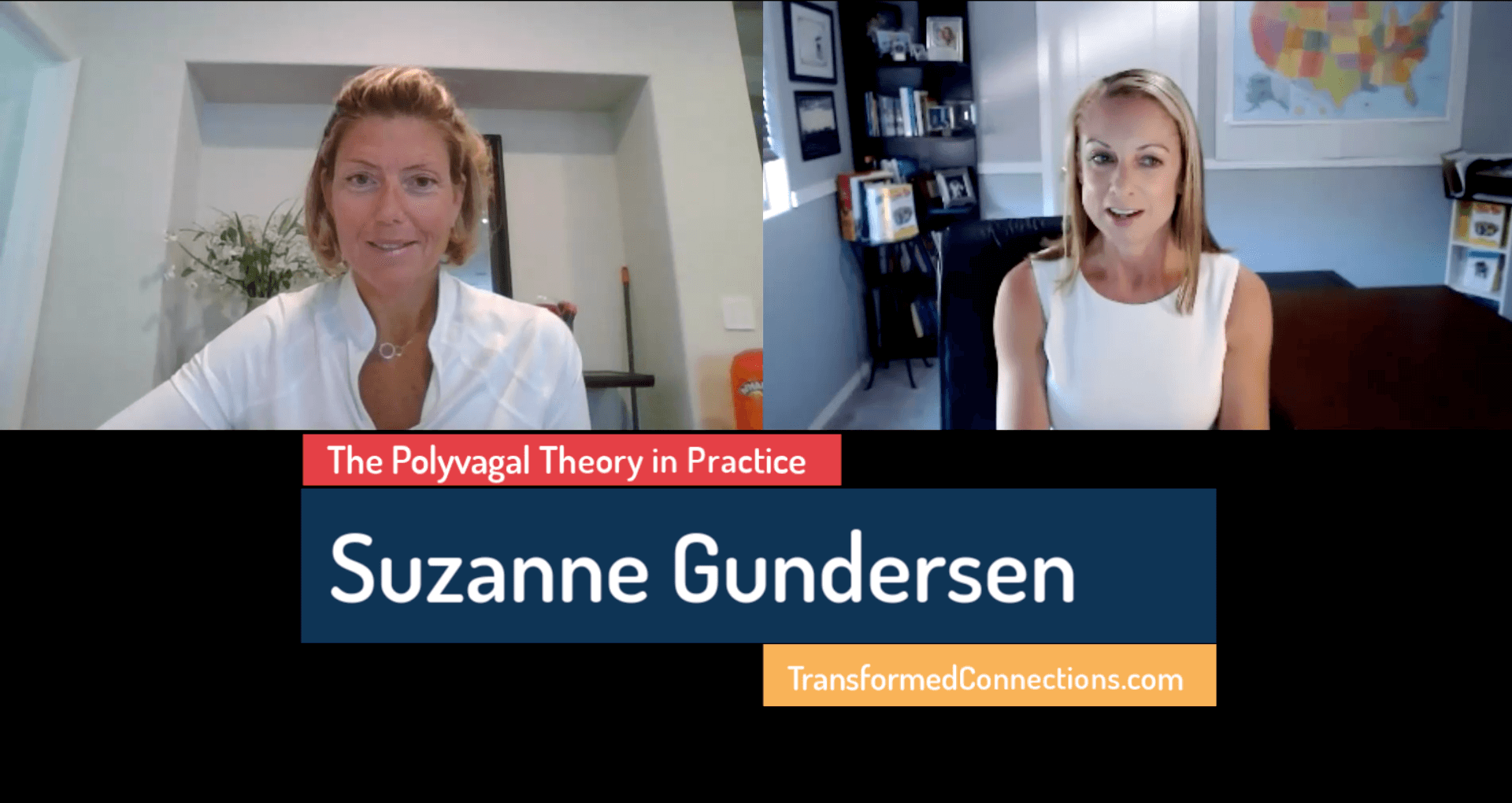 "Suzanne Gundersen on ""The Polyvagal Theory in Practice"""