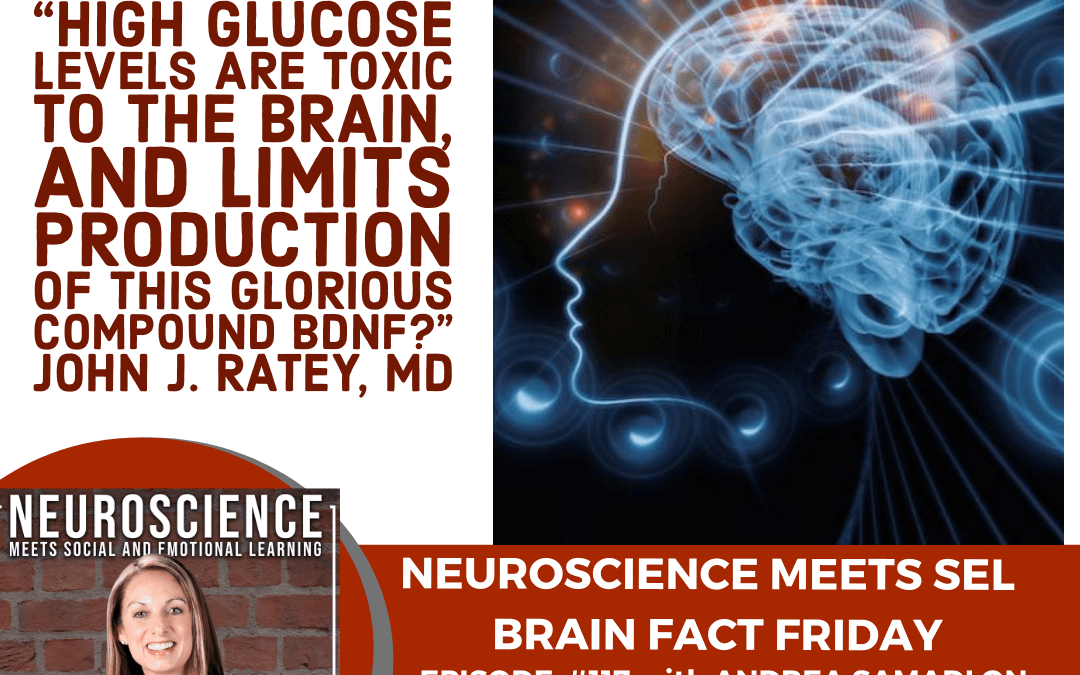 "Brain Fact Friday on ""The Damaging Impact of Sugar on the Brain and Body"" with Andrea Samadi"