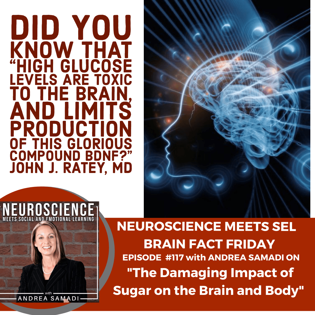 """Brain Fact Friday on """"The Damaging Impact of Sugar on the Brain and Body"""" with Andrea Samadi"""