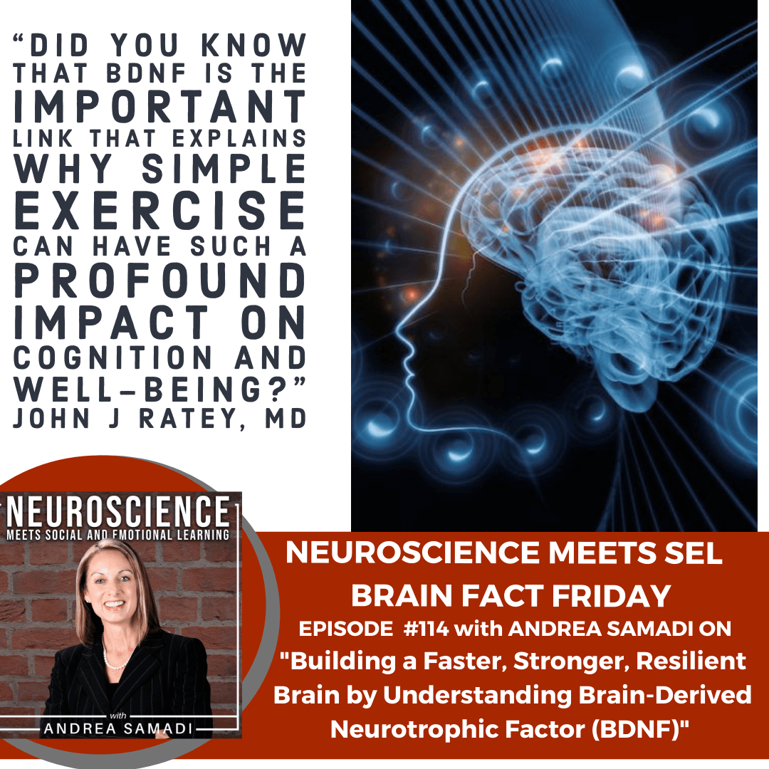 """Brain Fact Friday on """"Building a Faster, Stronger, Resilient Brain, by Understanding Brain-Derived Neurotrophic Factor (BDNF)"""""""