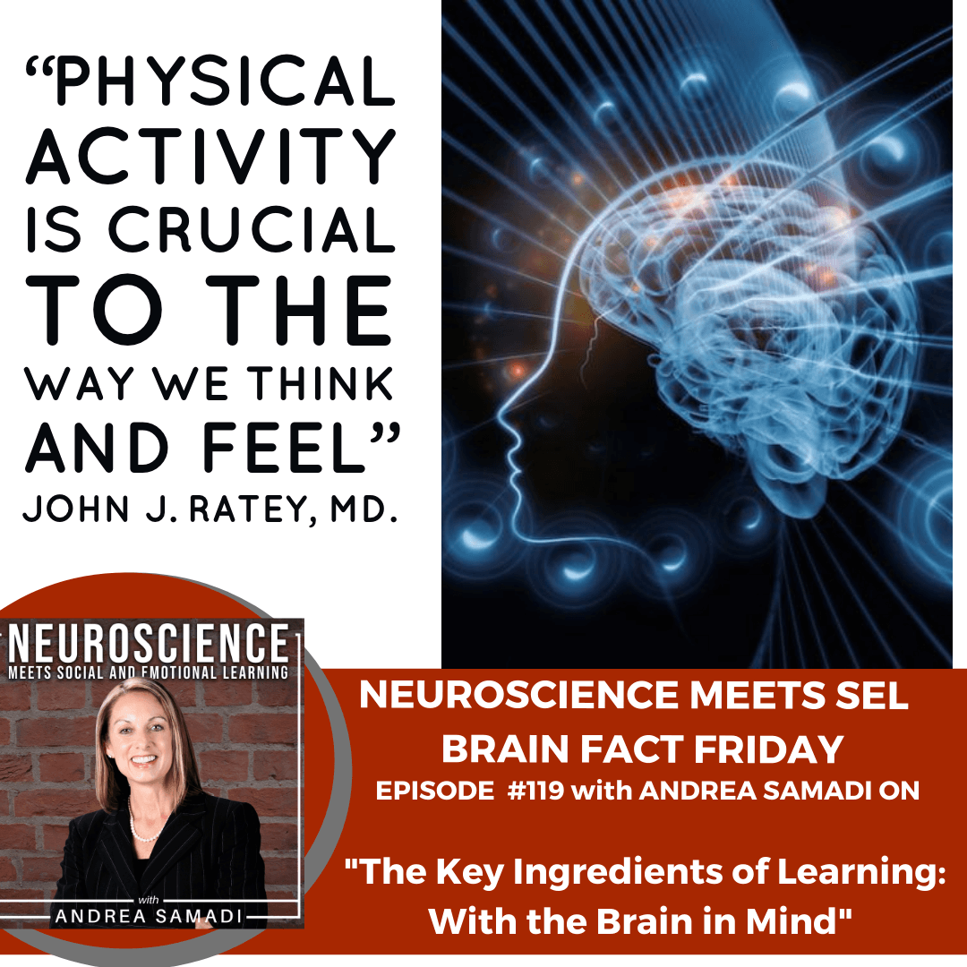 "Brain Fact Friday on ""The Key Ingredients of Learning with the Brain in Mind"" with Andrea Samadi"
