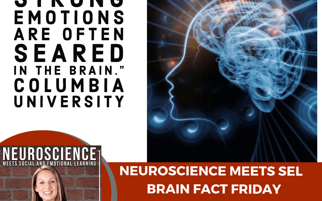 """Brain Fact Friday """"How Our Emotions Impact Learning, Memory and the Brain"""""""