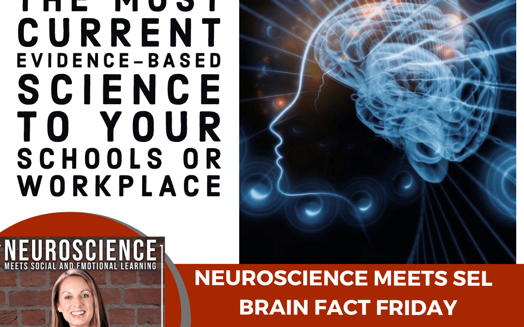 """Brain Fact Friday on """"How to Be a Neuroscience Researcher in 4 Simple Steps"""""""