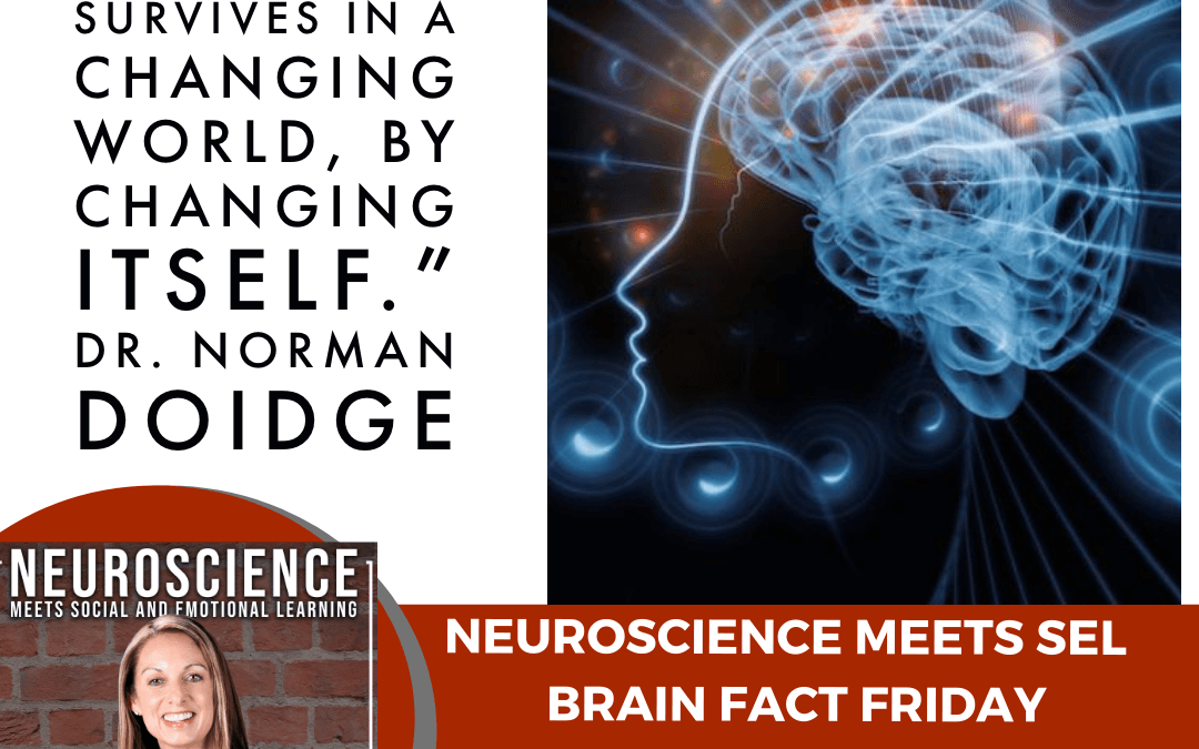 """Brain Fact Friday """"Using Neuroscience to Lessen the Impact of COVID-19 on Learning"""""""
