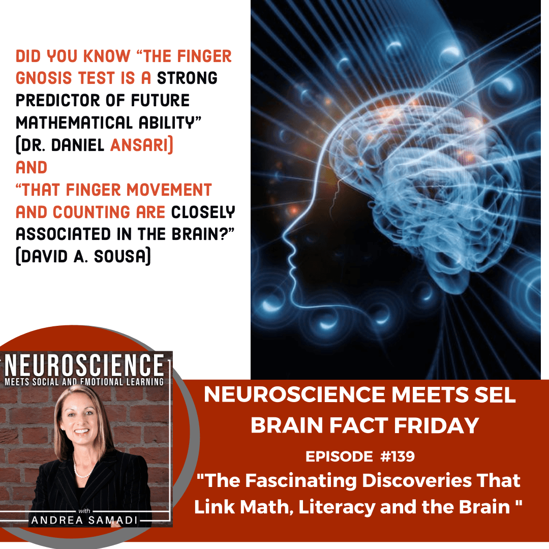 """Brain Fact Friday on """"The Fascinating Discoveries That Link Math, Literacy and the Brain"""""""