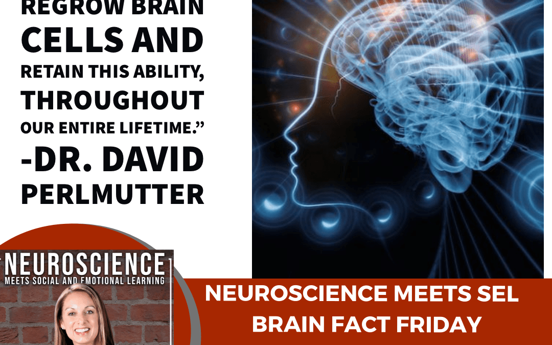 """Brain Fact Friday on """"Neurogenesis: What Hurts or Helps Your Brain Cells?"""""""