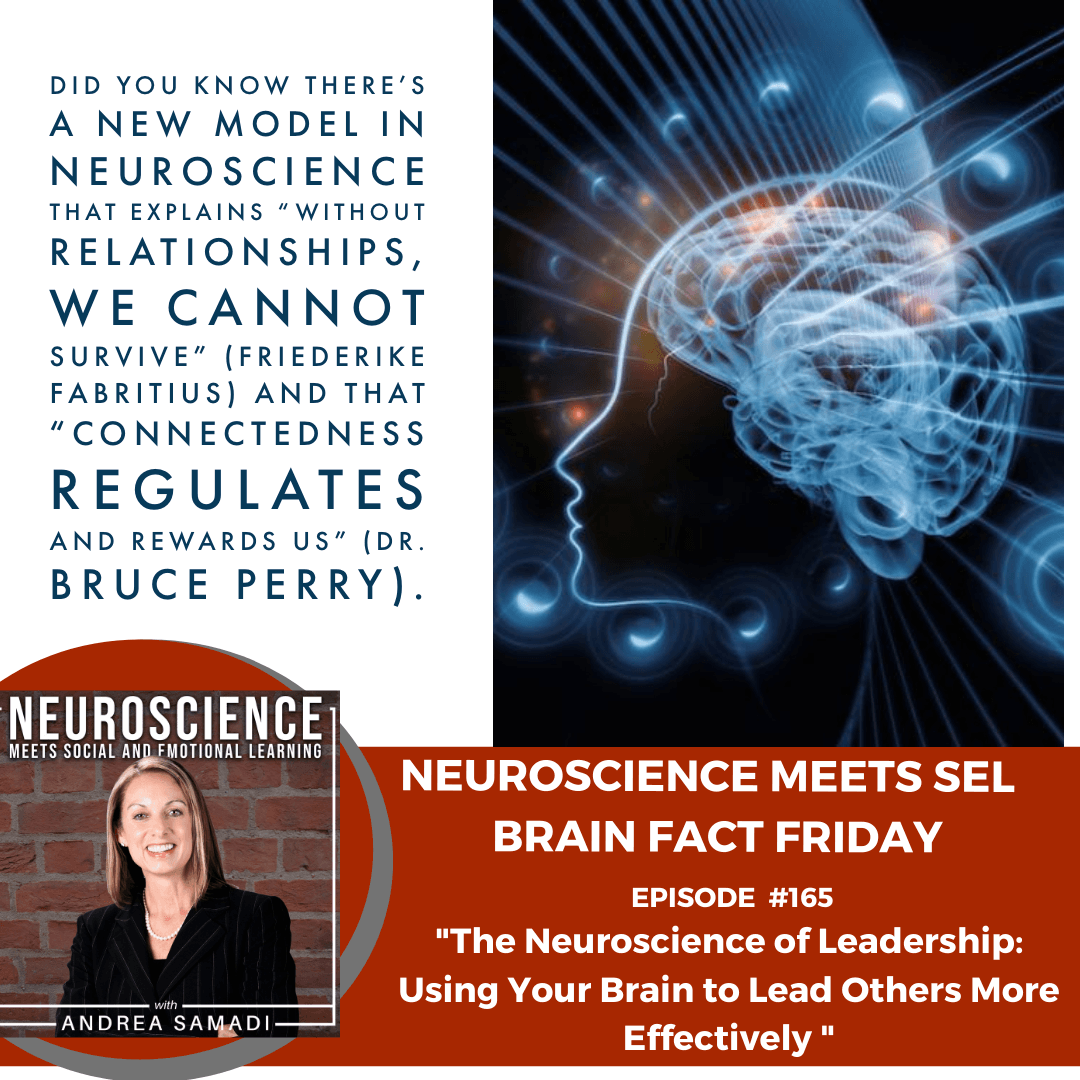 """Brain Fact Friday on """"The Neuroscience of Leadership: Using Your Brain to Lead Others More Effectively"""""""