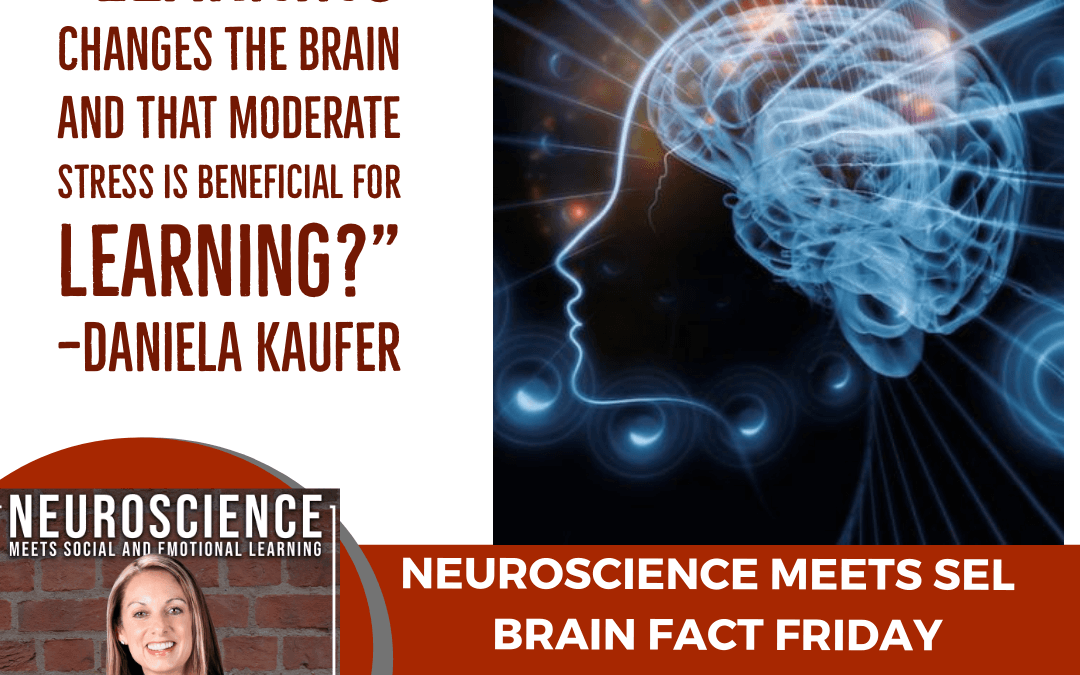 """Brain Fact Friday on """"The Neuroscience of Learning"""""""